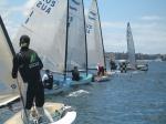 Sail Middle Harbour Finn start