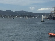 A busy Derwent River