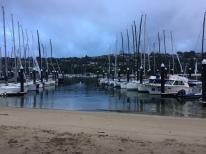 Early morning at MHYC's beach